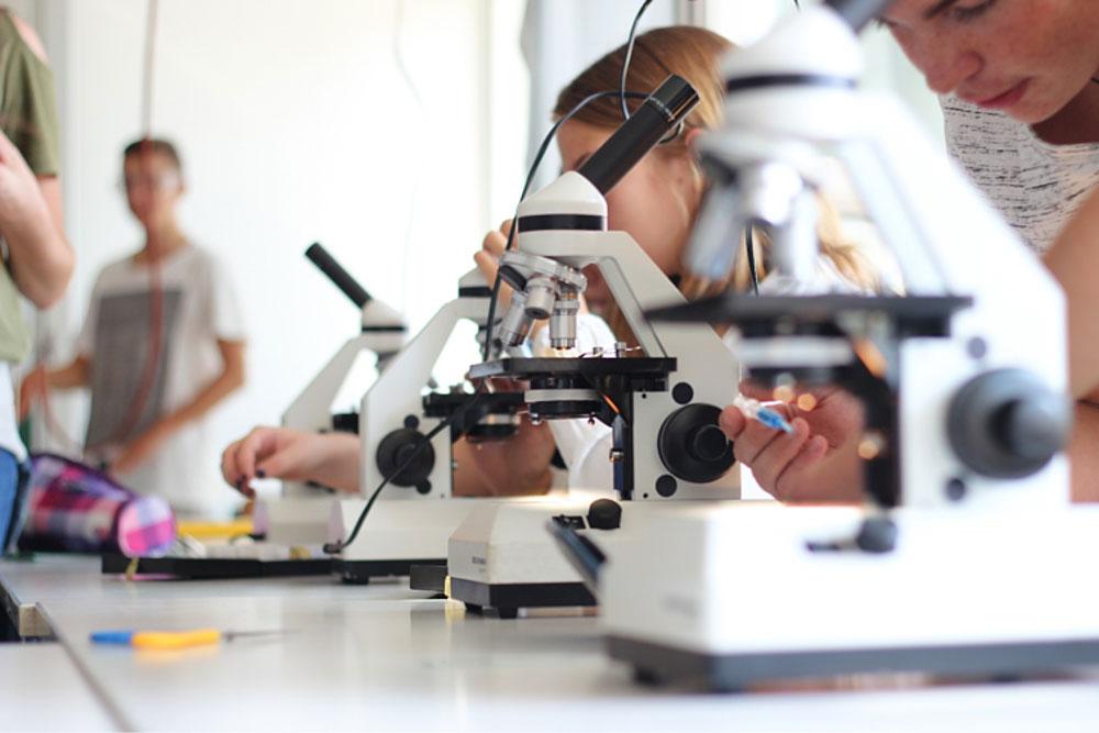 Lothar-Kahn-Schule Biologie